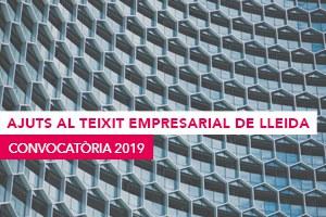 Imatge de la notícia AJUTS AL TEIXIT EMPRESARIAL  2019