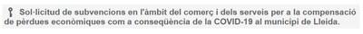 S'amplia, fins el dia 19 de novembre, el termini per a sol·licitar els ajuts al comerç, la restauració, els serveis i la venda no sedentària per a la ciutat de Lleida